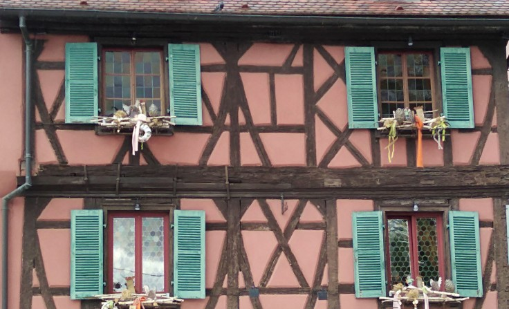 COLMAR KITCH1.jpg